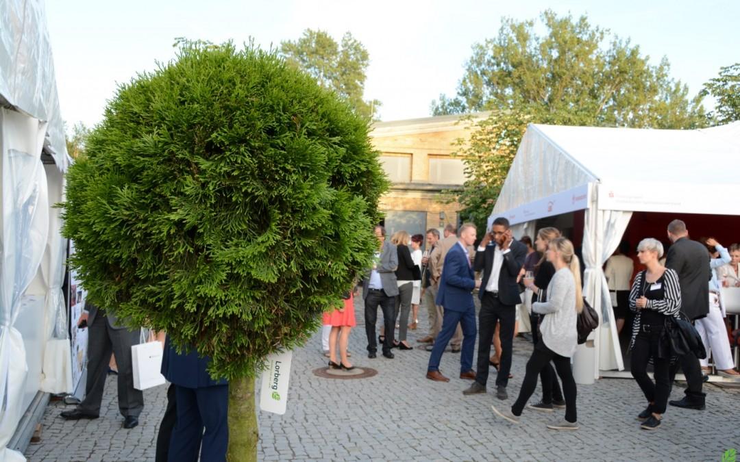 Rent-a-tree_Pflanzenverleih_Gartenfest_Kugelform_Lorberg_2