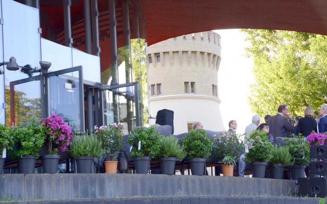 Rent-a-tree_Pflanzenverleih_Gartenfest_Stauden_Blumen pink_Lorberg_1
